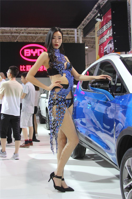 2017第十五届华中国际车展车